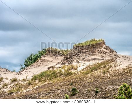 Dune formations covered with grass and pine trees, moving dune Wydma Czolpinska in the Slowinski National Park between Rowy and Leba, Baltic Sea, Poland
