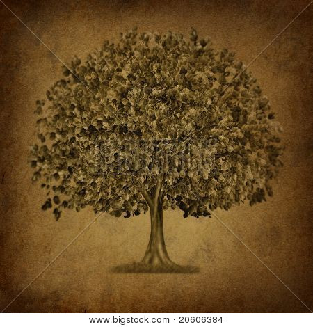 Growth Tree Symbol With Grunge Texture