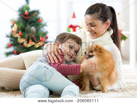 Family - mother and her son play with dog at christmas tree
