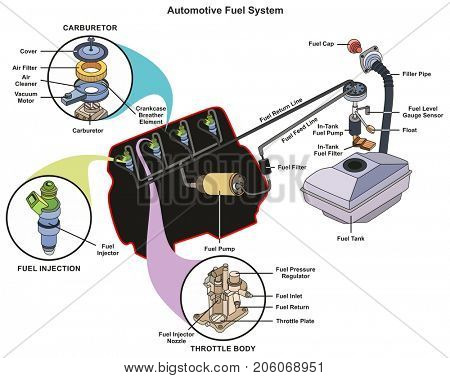 Automotive Fuel System infographic diagram showing parts of carburetor injector throttle body from tank to engine process for mechanics and road traffic safety science education