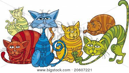 Color Cats Group