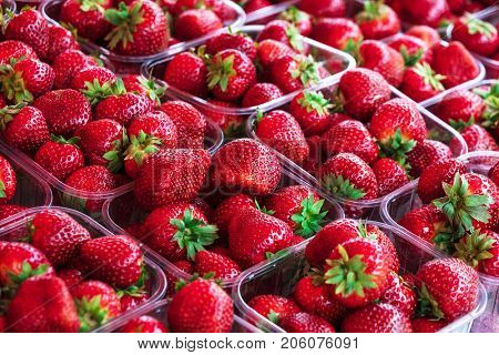 Strawberries in plastic containers at marketplace