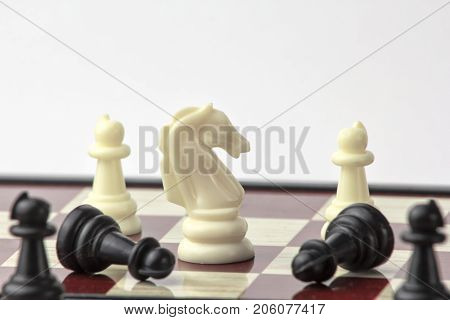 chess white horse wins pawns. concept of struggle and leadership. isolated on white background