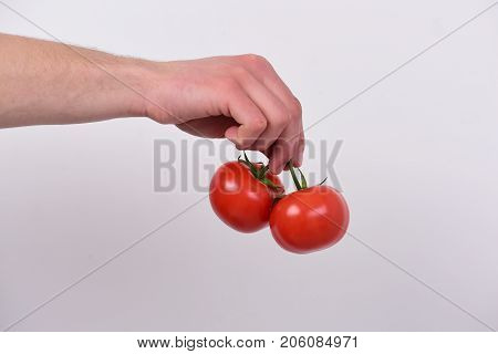 Male Hand Holds Bunch Of Red Tomatoes