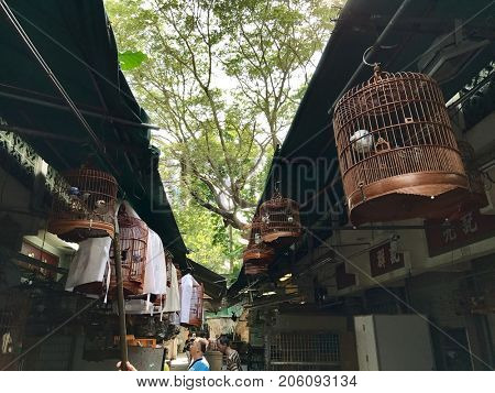 HONG KONG - OCTOBER 25, 2016: Cages hanging in the Yuen Po Street Bird Market and Flower Market in Mong Kok, Kowloon, Hong Kong.