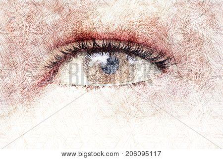 human eye hand drawn pen drawn pencil drawn sketch drawning