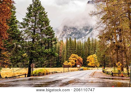 Wet road in Yosemite National Park Valley at cloudy autumn morning. Low clouds lay in the valley. California, USA.