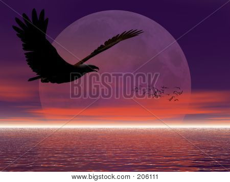 Eagle Against Moon.