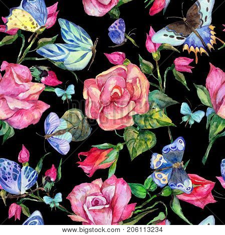 Exotic butterfly wild insect and roses pattern in a watercolor style. Full name of the insect: blue butterfly. Aquarelle wild insect for background, texture, wrapper pattern or tattoo.