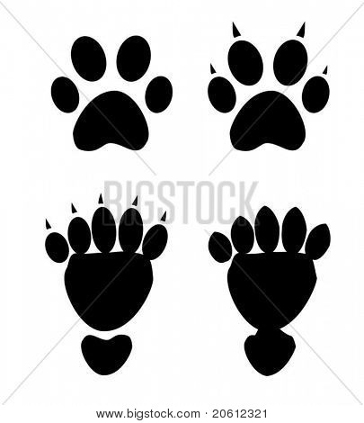 paw print collection