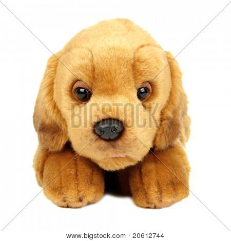 Isolated plush toy dog on white background