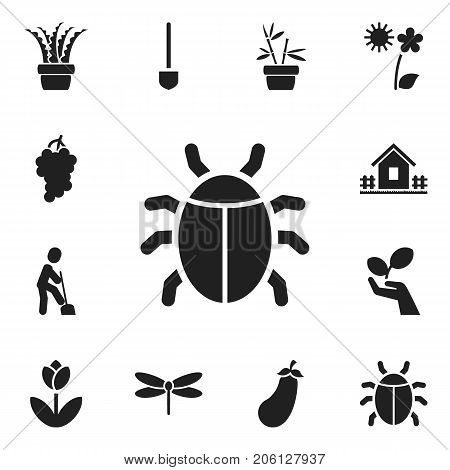 Set Of 12 Editable Agriculture Icons. Includes Symbols Such As Home With Fence, Beetle, Flowerpot And More