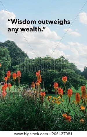 Inspirational quote by ancient Greek philosopher on nature background