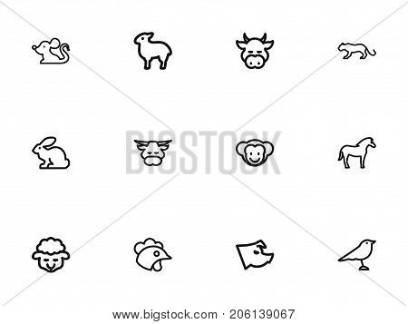 Set Of 12 Editable Animal Outline Icons. Includes Symbols Such As Ox, Ape, Calf And More