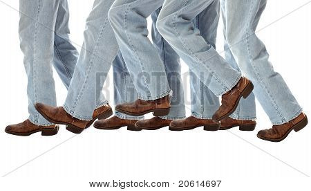 Walking legs take one stride