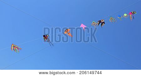 Kites Fly High In The Sky In Summer