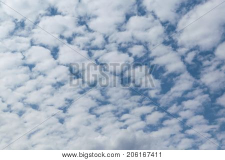 In the blue sky white Cumulus clouds arranged in a grid or pattern. The sun is shining and the clouds are shining. Summer day with the wind. Landscape climate.