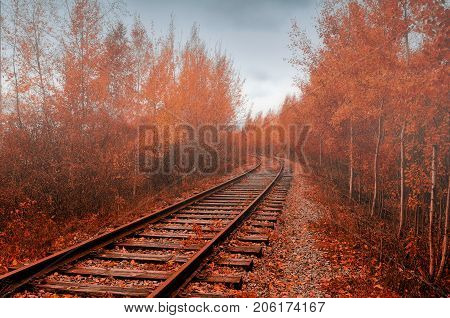 Autumn industrial landscape. Autumn cloudy forest. Railway receding into the distance among autumn trees. Colorful autumn landscape in foggy weather. Autumn trees along the old abandoned railway. Autumn landscape with autumn trees