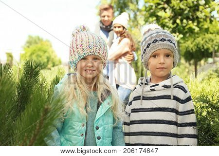 Cute children and parents at Christmas tree market