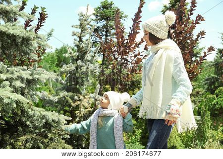 Young mother and daughter at Christmas tree market