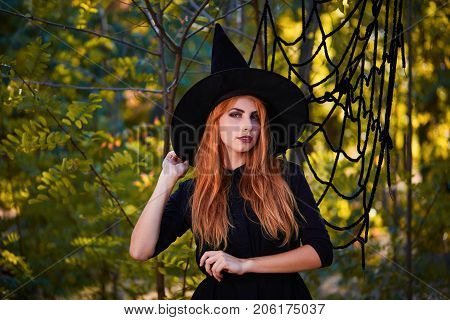 A magical ginger witch in a hat on a blurred forest background. Young attractive girl in a fantasy Halloween witch costume. Copy space.