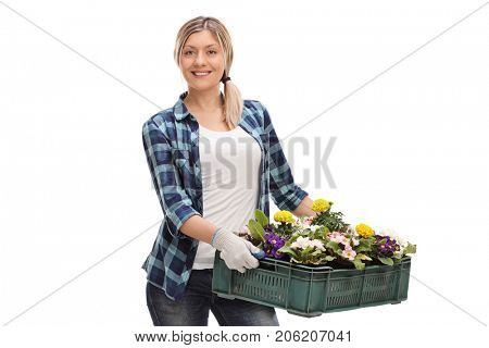 Female gardener holding a rack of flowers isolated on white background