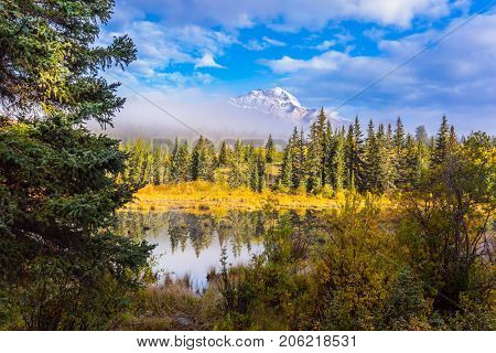 Cloudy morning in the Rocky Mountains. Patricia Lake among the firs and pines. Water reflects the sky. The concept of ecotourism