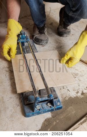 Tiler cutting ceramic tiles during floor installation