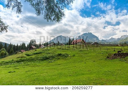 Beautiful landscape in Montenegro with fresh grass and beautiful peaks. Durmitor National Park in Montenegro.