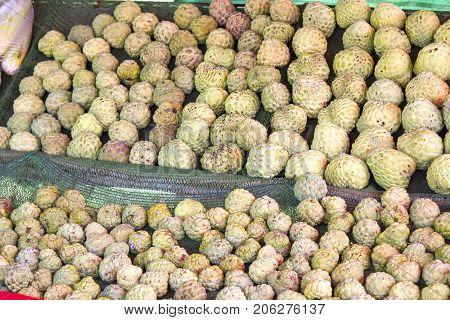 Many custard apple green in a basket