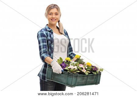 Female gardener with a crate full of flowers isolated on white background