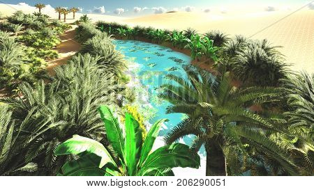 Lavish spectacular plant life on desert later in the day, 3d rendering