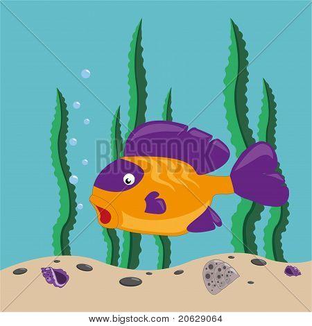 Gele fish