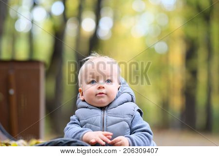 Portrait of toddler child in warm vest jacket outdoors. One year old baby boy in autumn park