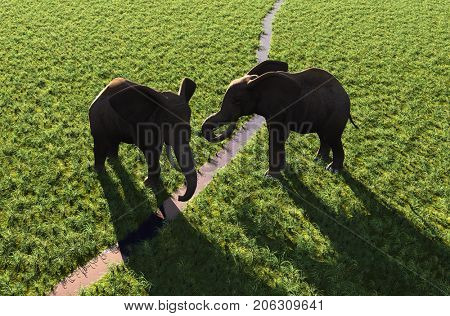 A group of elephants drink water from a river.,3D render