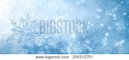 Winter snow background.Snowflake Closeup.