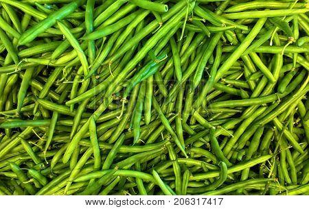 Image of Fresh green String Beans
