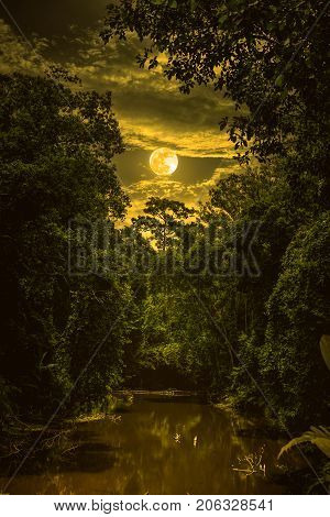 Landscape Of Sky With Clouds And Moon Over Serenity Nature In Forest. Sepia Tone.