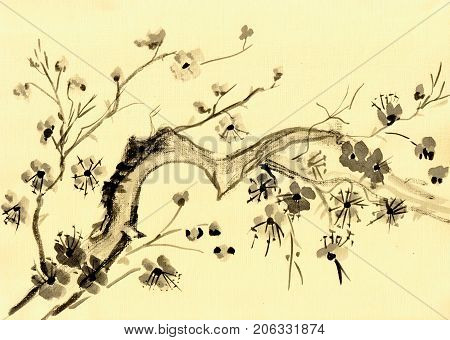Flowering branch of the tree japanese style