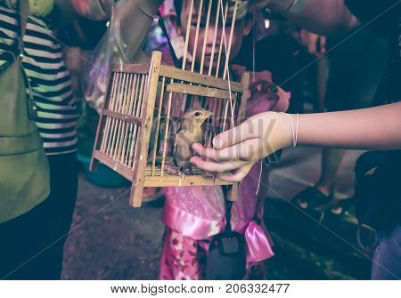 Asian girl with her mother to set free a little bird from the cage for merit outdoors in the evening. Dark tone.