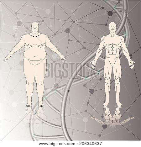 male human fat and muscle background chromosome