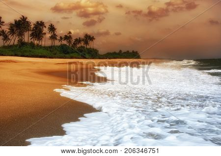 Wave of the sea on the sand beach.Beach and tropical sea.Sunset over the coconut palms. Paradise idyllic beach Sri Lanka. Beautiful Sri Lanka landscape. Exotic water landscape with clouds on horizon. Summer holidays. Ocean shore in the evening as nature t