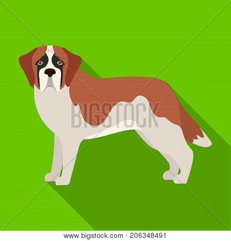 Beagle, single icon in flat style.Beagle, vector symbol stock illustration .