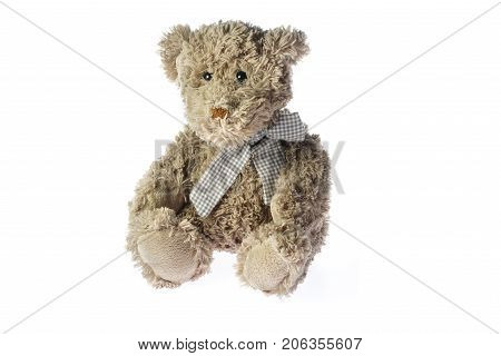 Sitting Teedy Bear plush toy isolated on white background