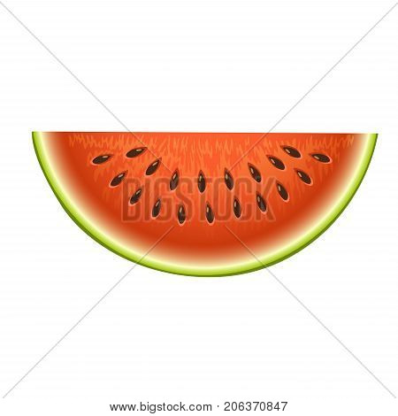 Ripe striped watermelon realistic juicy healthy vector illustration. Slice green isolated ripe melon. Vegetarian diet freshness dessert. Water refreshment delicious fruit.
