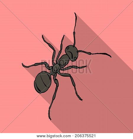 The hymenopteran insect is an ant.Arthropod animal ant single icon in flat style vector symbol stock isometric illustration .