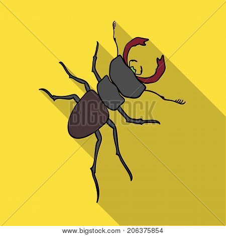 Beetle, arthropodous insect. A beetle with claws single icon in flat style vector symbol stock isometric illustration .