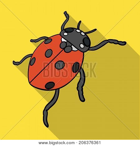 Ladybug is an arthropod.The insect beetle, ladybug single icon in flat style vector symbol stock isometric illustration .