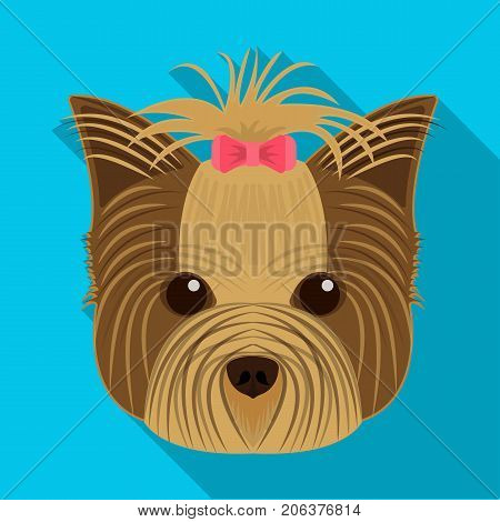 Muzzle of a pet, a hairdress dog with a bow. Pet, dog care single icon in flat style vector symbol stock illustration .