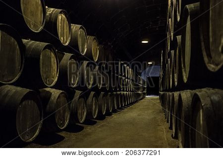 Old wooden barrels for wine in wine cellar, Underground storage with alcohol, Alcohol in wooden barrels